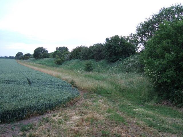 Former railway embankment between Murrow and Guyhirn
