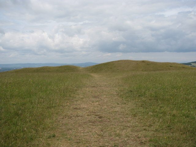 Path to the long barrow on Selsley Common