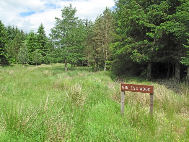 Winless Wood