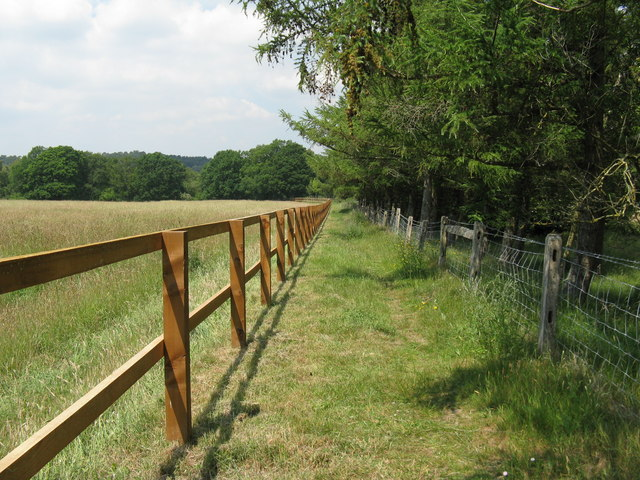 New fence near Popple Hill