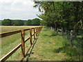 SU9318 : New fence near Popple Hill by Dave Spicer