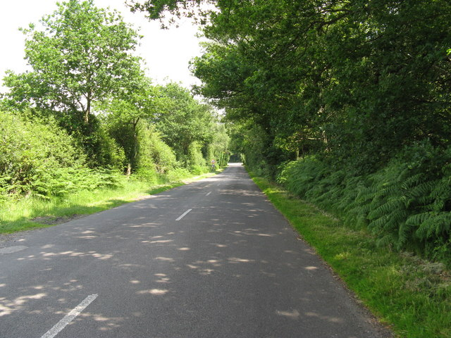 NE on lane from Graffham to Lavington Common