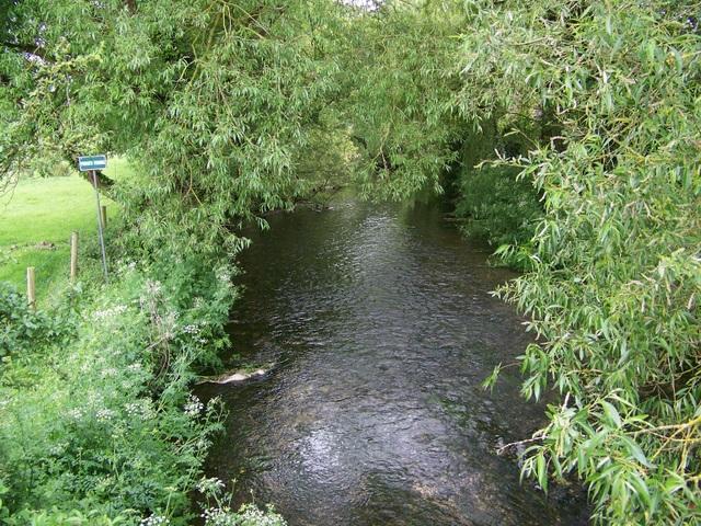 River Allen, Witchampton