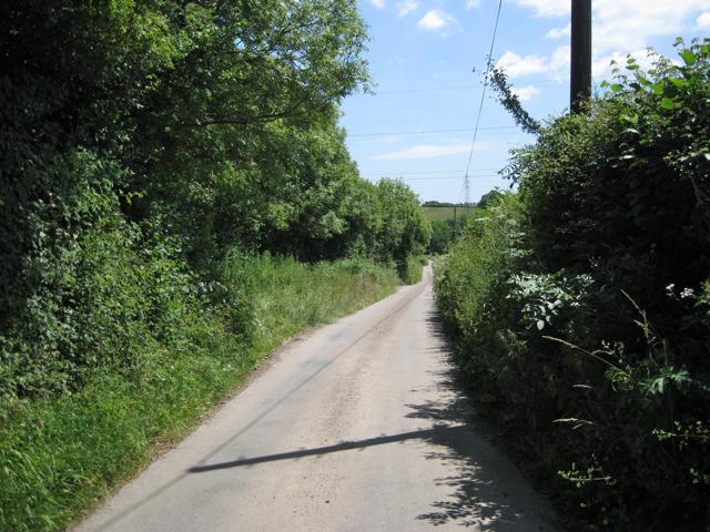 Lane past Kellinch to Metley Cross