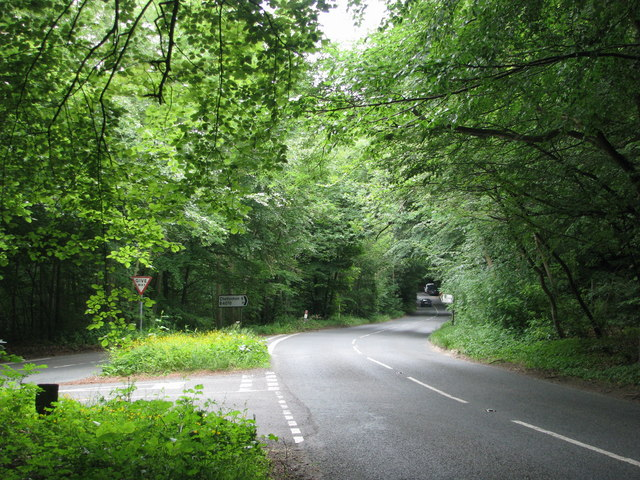 The B4070 through Witcombe Wood
