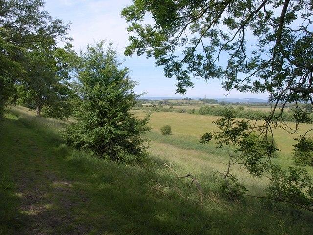Footpath near Riversmead Farm