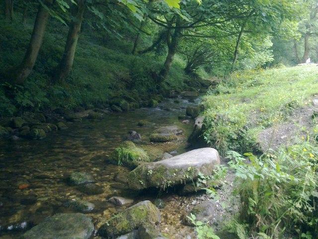 River Clywedog at Nant Mills