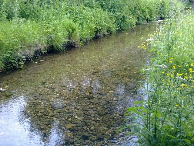 River Clywedog at Bersham