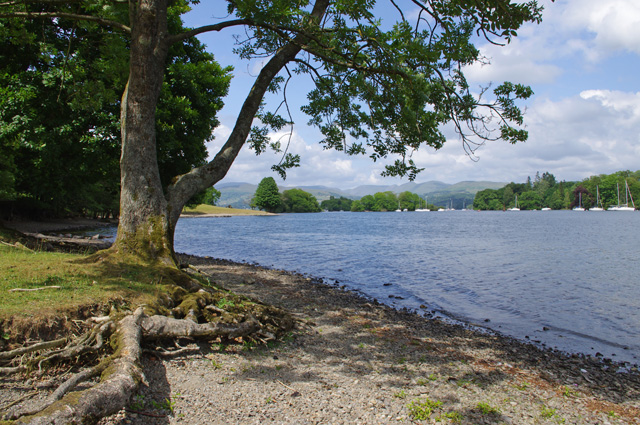 Western shore of Windermere
