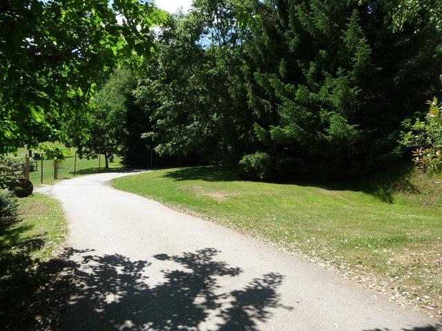 Canonteign Falls : Driveway