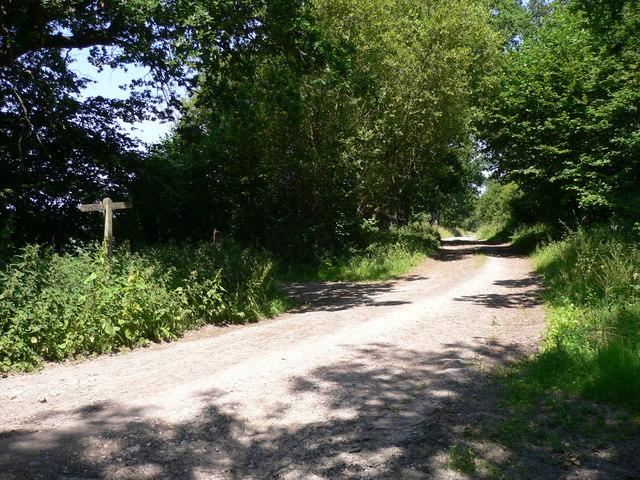 Footpath north of Bepton