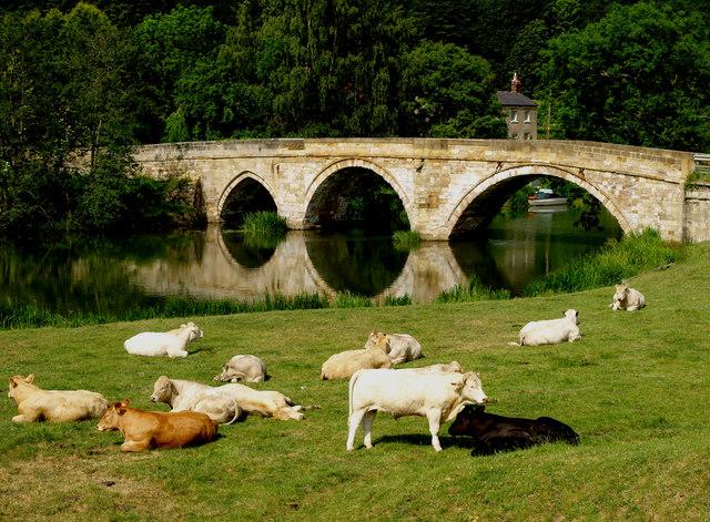The Bridge at Kirkham Abbey