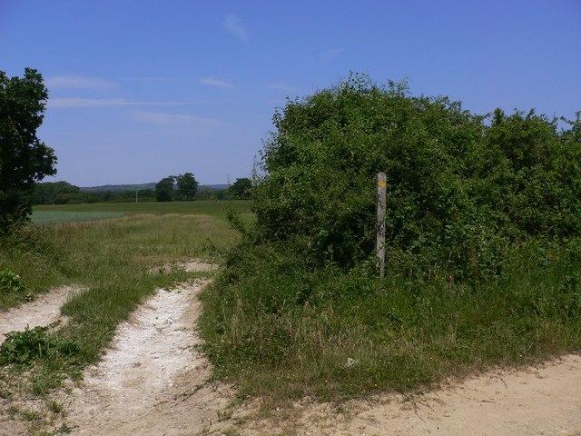 Abrupt right turn on footpath