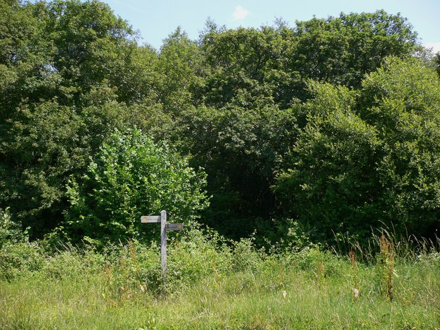 Signpost at Apsley Copse