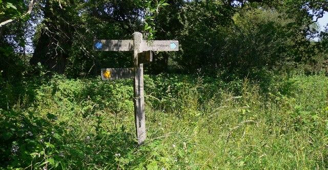 Signpost on Minching Lane