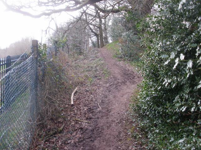 Steep climb on track through Lodge Wood, Caerleon