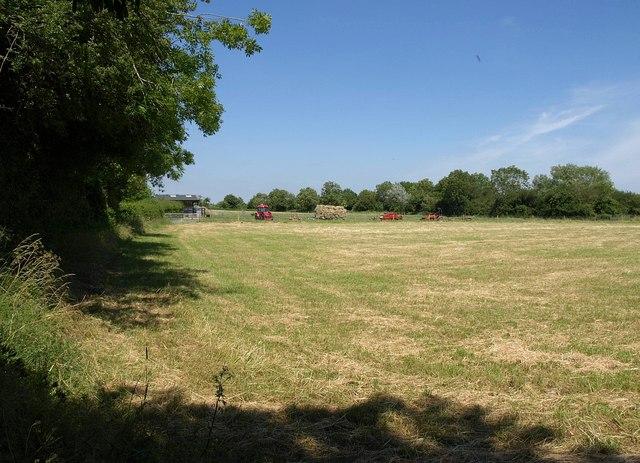 Field near Longney