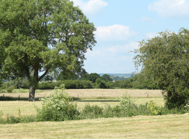2010 : Fields adjacent to one of the Five Lanes
