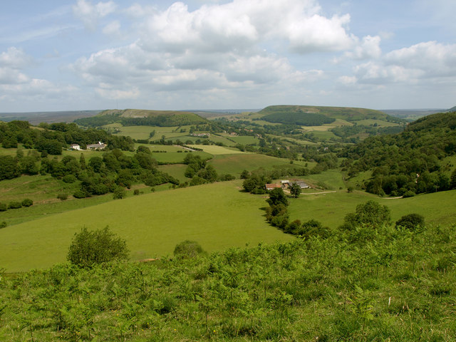 Gower Dale