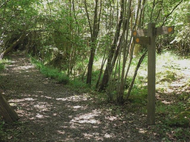 Footpath junction near Piper's Farm