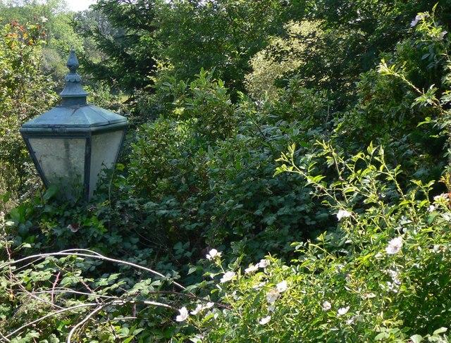 Lamp at Piper's Farm