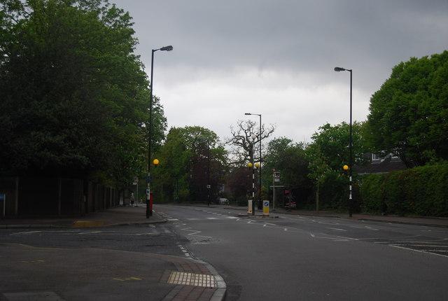 Zebra Crossing, Sydenham Hill