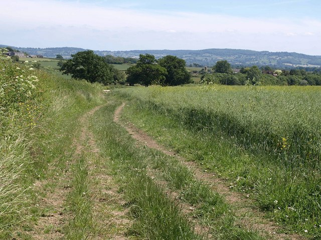 Track to Monks Hill Cottage