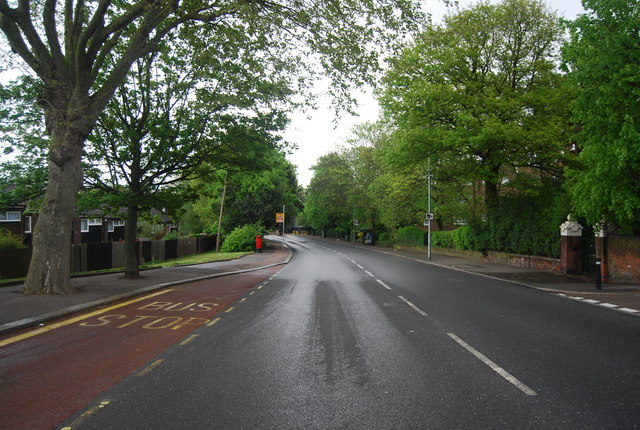 Westwood Hill (A212)