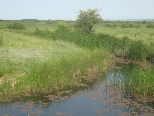 Dyke in Cliffe Marshes
