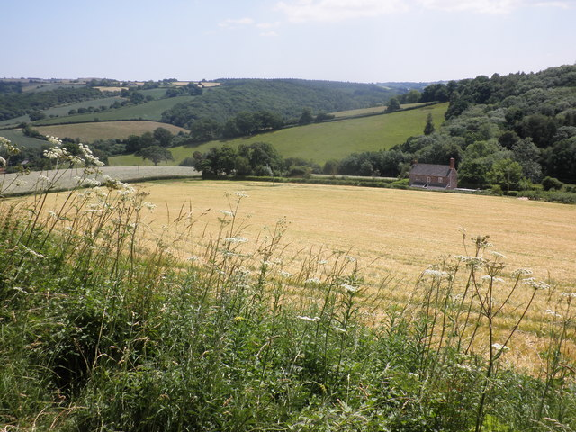 View over the fields near Posbury