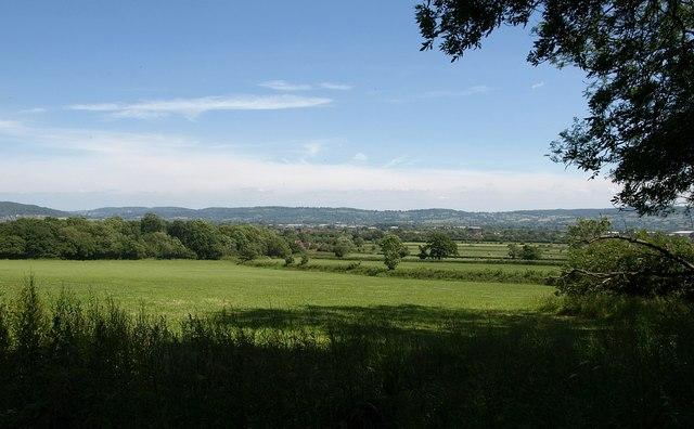 Field near Grove End