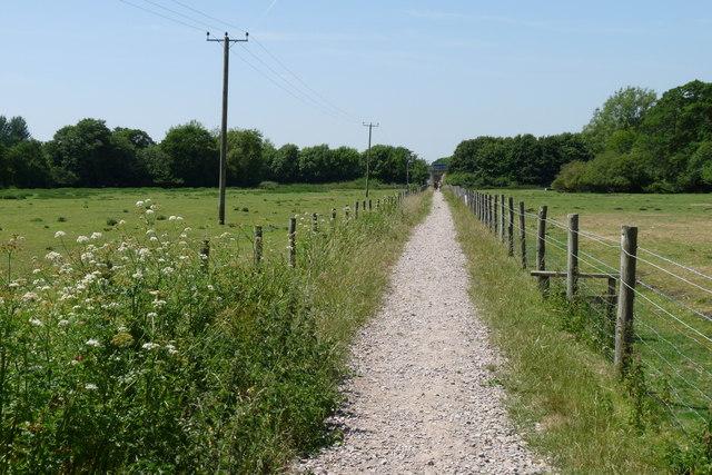 Bridleway Near Stinsford, Dorset