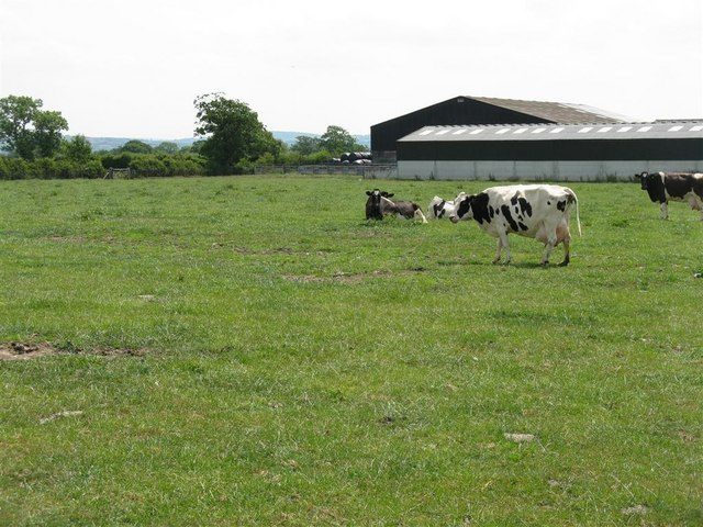 Bolton Fold Farm