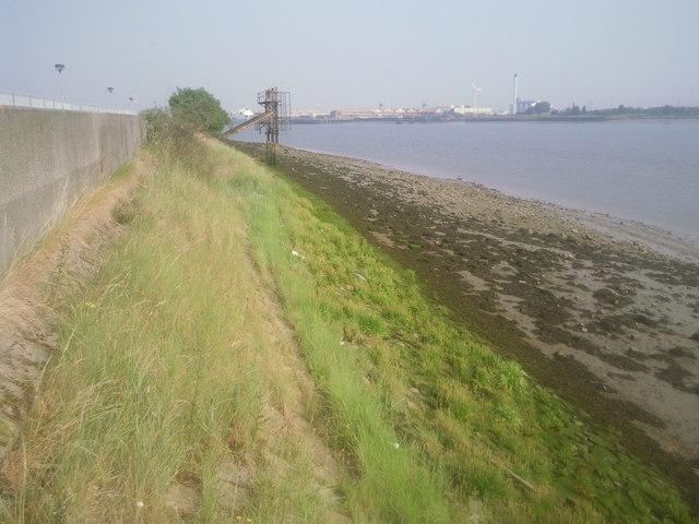 River Thames near Jenningtree point