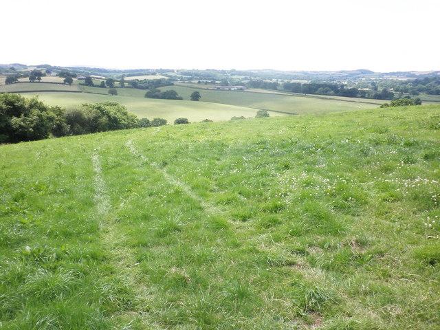 Three Corner Moor