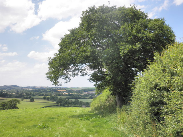 Devon Heartland Way
