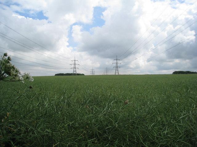 Between the power lines