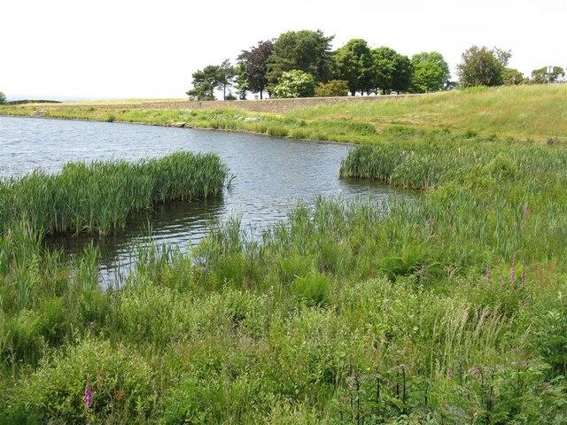 Small reservoir near Nook Fold