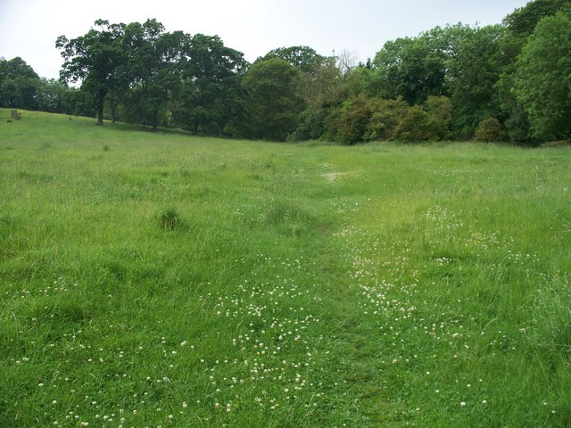 Open field footpath
