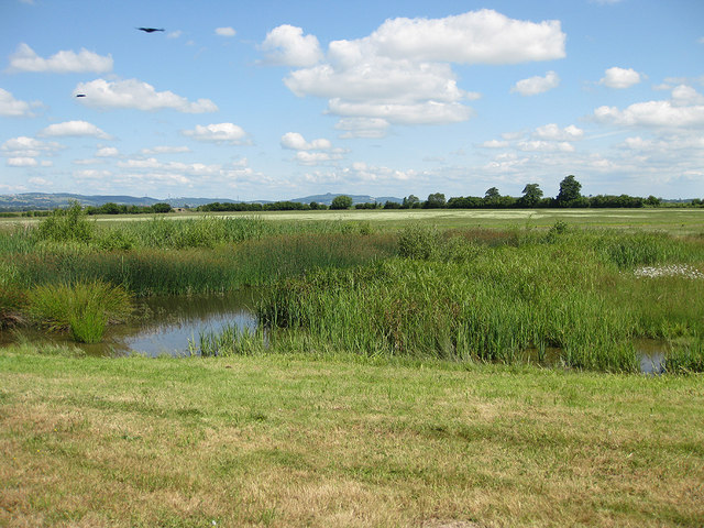 View to May Hill from Rushy Hide, Slimbridge Reserve
