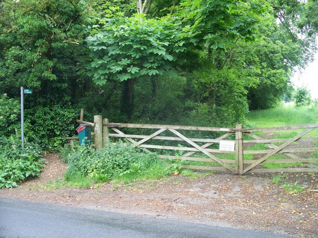 Towards Norcombe Wood