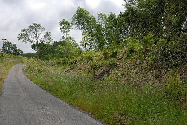 Railway embankment east of Llanfarian