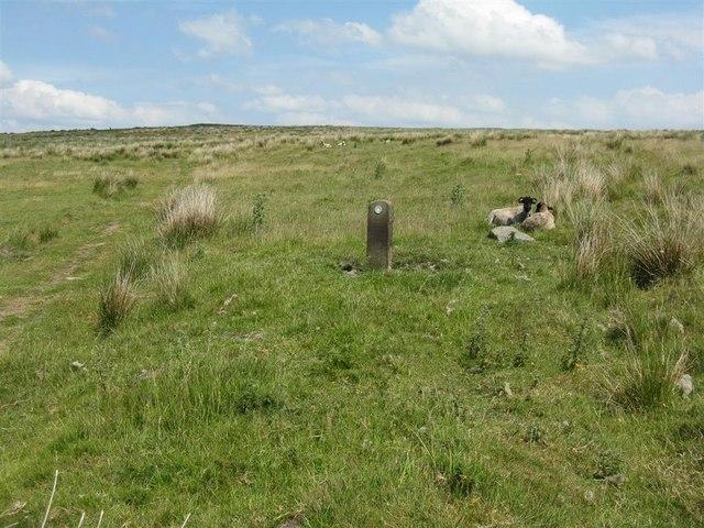 Path on Jeffrey Hill