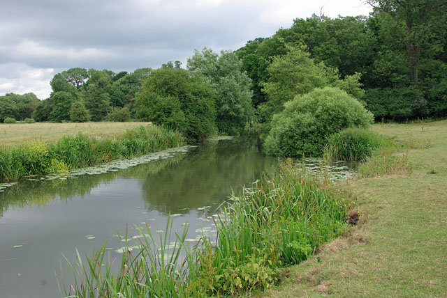 River Mole near Dendy's Wood