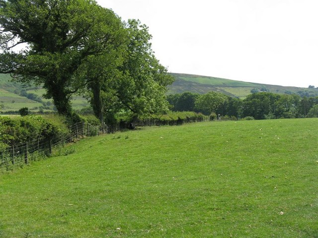 Fields at Carr Side