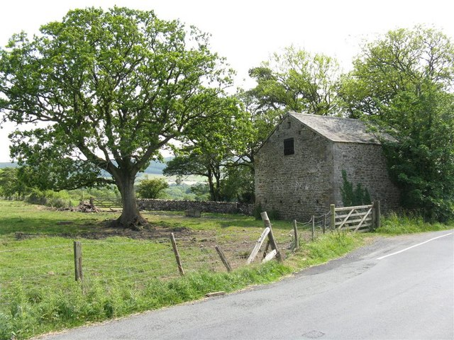 Oak tree and barn at Lees