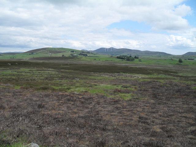 Wild land behind Golspie Hills