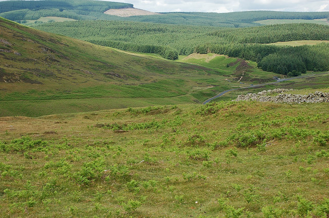 Ancient settlement site, Meldon Burn