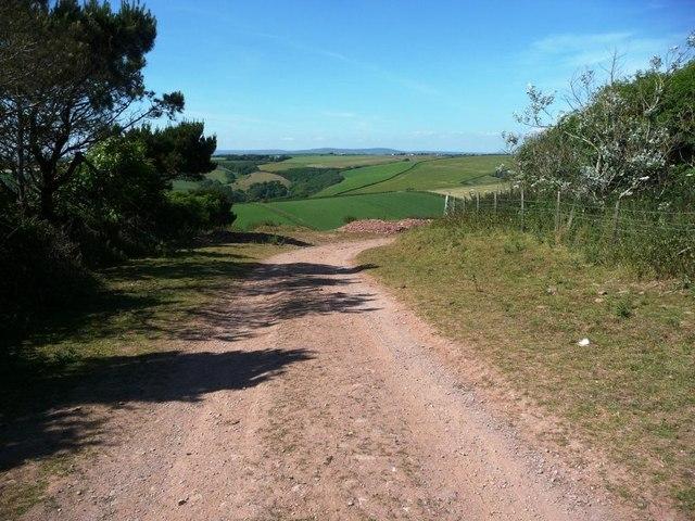 Farm track, near Tapfield Cross