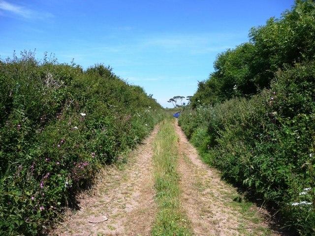 Footpath to B3392